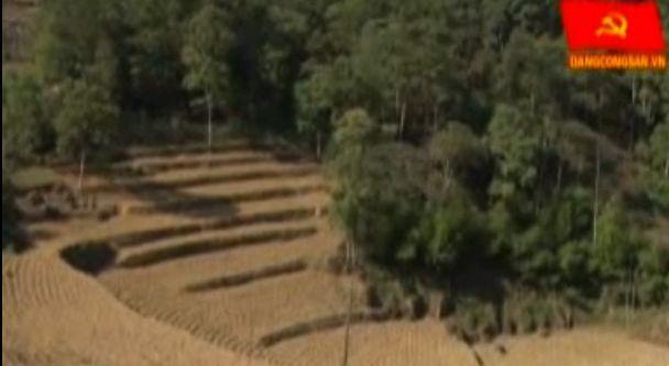 ĐCSVN - Community based forestland conflict resolution