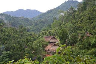 (ĐCSVN) Đi tìm lời giải cho đất rừng Minh Sơn - Lạng Sơn
