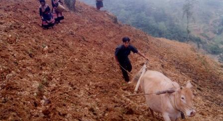 (NN&NT): Mâu thuẫn đất rừng Nông Lâm trường Quốc doanh với người dân địa phương