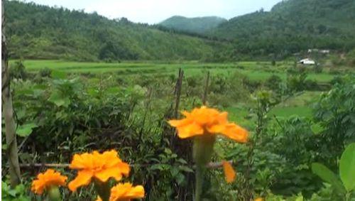 CIRUM - Lễ hội rừng thiêng của người Tày bản Khe Váp, xã Bắc Lãng, tỉnh Lạng Sơn
