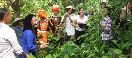 Nâng cao năng lực quản lý bền vững tài nguyên cây thuốc nam và rừng cộng đồng