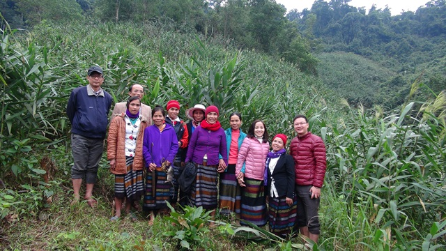 Mô hình trồng Đót tạo thu nhập cho phụ nữ Vân Kiều - Quảng Bình
